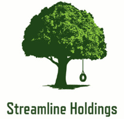 Streamline Holdings LLC Logo