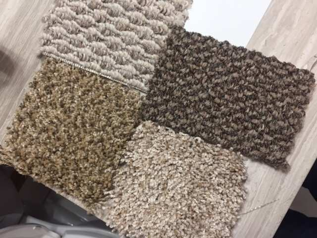 Would You Recommend Another Type Of Carpet Which The Two Be Preferred As A Al Property Owner