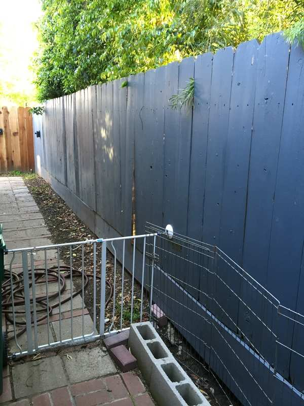Neighboring Property Owner Wants To Replace Common Fence Advice