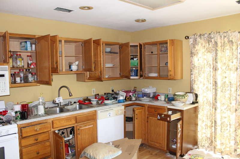 Rental Kitchen rehab advice needed