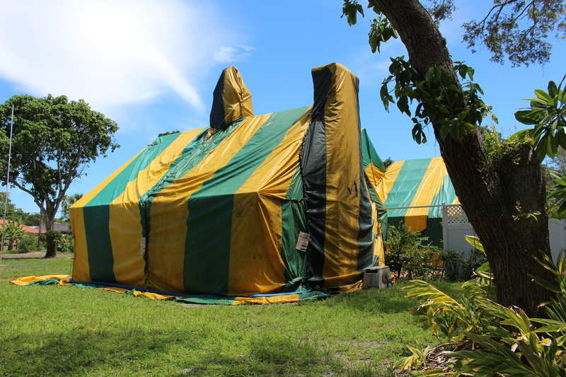 Termite Fumigation A Big Circus Tent