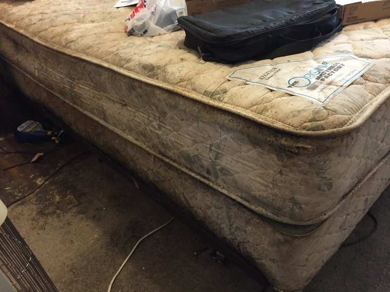 James Wise shows a filthy bed bug covered mattress