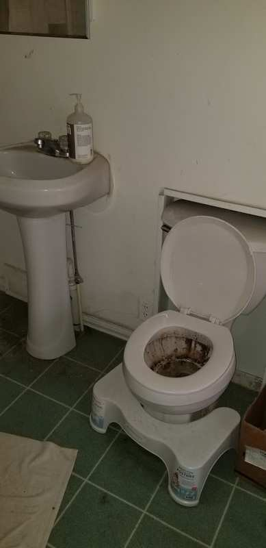 squatty potty with poop on it