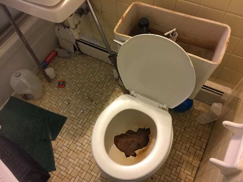tenant poops everywhere