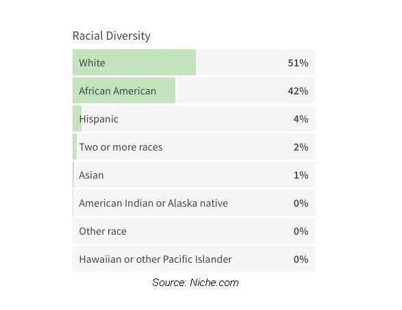 Normal 1607827980 Racial Diversity