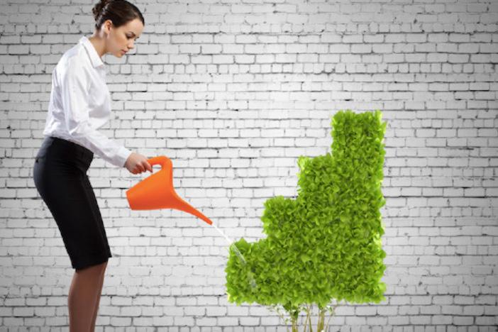 Raising Investment Capital